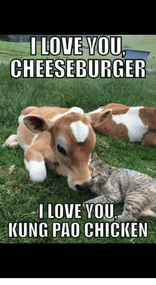 I love you cheeseburger i love you kung pao chicken