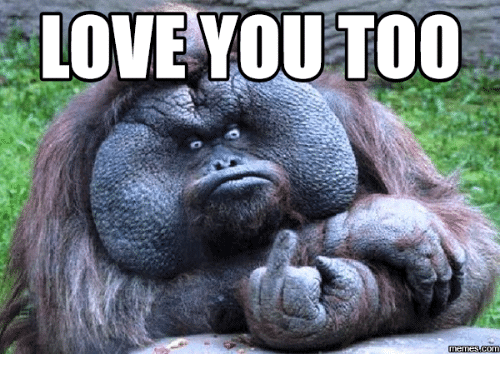 Love you too memes funny pics