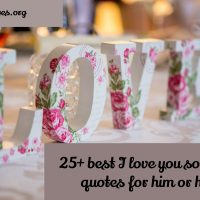 25 best i love you so much quotes for him or her