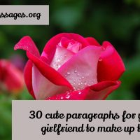 30 cute paragraphs for your girlfriend to make up to